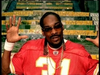 Snoop Dogg - Beautiful (feat. Pharrell)