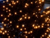 Traditional Christmas Songs - Ich bete an die Macht der Liebe (Christmas Song)