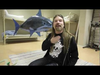 Sabaton - Carolus Rex - Fast, as a shark?