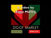 Ziggy Marley - Forward to Love Remix | Wild and Free