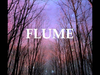 Flume - Over You (feat. Jezzabell Doran)