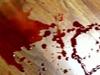 Lucariello - Democratica violenza
