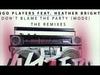 Bingo Players - Don't Blame The Party (Mode) (Qulinez Remix)