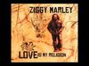 Ziggy Marley - Beach In Hawaii | Love Is My Religion