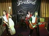 The Firebirds - Two Timin Lover