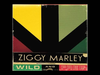 Ziggy Marley - Welcome To the World | Wild and Free
