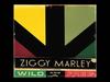 Ziggy Marley - Reggae In My Head | Wild and Free