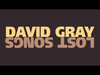 David Gray - Hold On