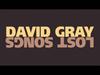 David Gray - As I'm Leaving