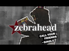 Zebrahead - Call Your Friends (Single)