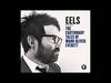 EELS - Lonesome Lockdown Hurricane -- (audio stream)