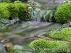 Brice Salek - Nature Sounds and Spirit Chimes Movement 2