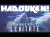 Hadouken! - Levitate (Swindle Remix)