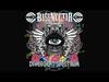 Bassnectar - The Matrix (feat. D.U.S.T) (FULL OFFICIAL)