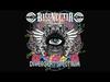 Gogol Bordello - Immigraniada (Bassnectar Remix) (Radio Edit) (OFFICIAL)