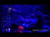 311 - Showdown (live)