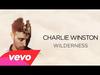 Charlie Winston - Wilderness (Cover Art)