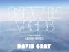 David Gray - Snow In Vegas (feat. LeAnn Rimes)