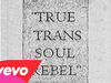 Against Me! - True Trans Soul Rebel