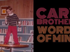 Cary Brothers - Words Of Mine