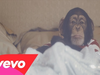 Teddybears - No More Michael Jackson