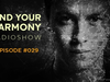 Andrew Rayel - Find Your Harmony Radioshow #029