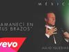 Julio Iglesias - Amanecí en Tus Brazos (Cover Audio)