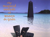 Banco de Gaia - I Love Baby Cheesy (The Afro European Remix)