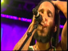 Conscious Party - Ziggy Marley   Live at Rototom in Benicassim, Spain (2011)