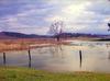 Doğa Sesleri - Beautiful Tree on Wonderful Lake (Poyrazlar Gölü)