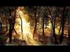 Aladdin - We Enter (Deep Forest Dub) (1994)