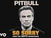 Pitbull - So Sorry (From the Gotti Soundtrack)