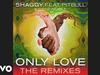 Shaggy - Only Love (Bad Royale Remix) (Audio) (feat. Pitbull, Gene Noble)