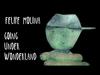 Felipe Molina - Going Under Wonderland (The Story Behind the Art)