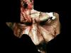 Rob Zombie The Texas Zombie Massacre 2009