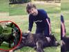Jamiroquai - Jay Kay playing with adorable Alsatian in the garden