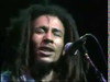 Bob Marley & The Wailers | Lively Up Yourself (Live at The Rainbow Theatre, London 1977)