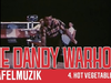 The Dandy Warhols - 5. HOT VEGETABLE - Tafelmuzik