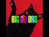 Ryan Adams - Big Colors Promo